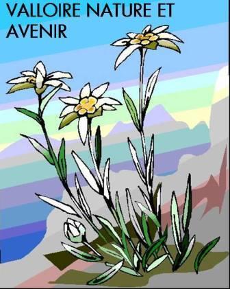 Association Valloire Nature Et Avenir (Vnea)